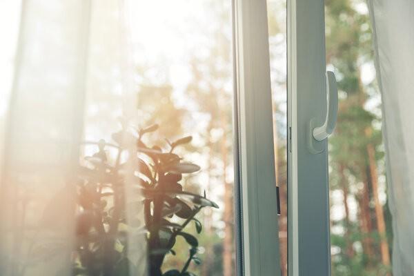 Aussicht aus einem zweiflügeligen Dreh-Kippfenster nach draußen